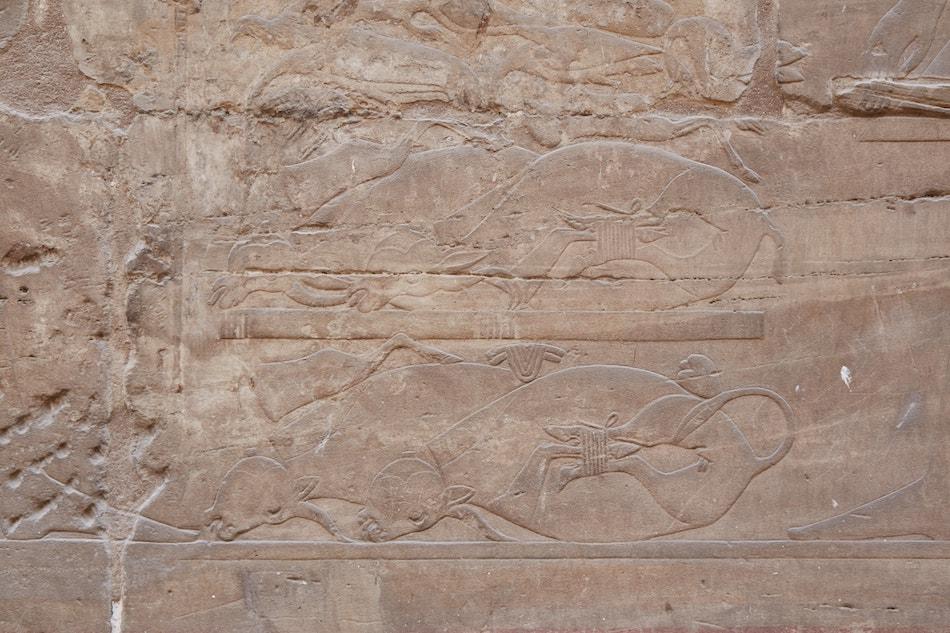 Luxor Temple Hall of Twelve Columns